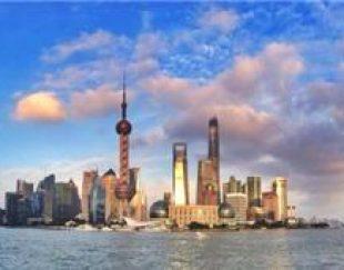 مشاور بیزنس مسلط به زبان چینی ساکن شانگهای